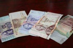 transnistrian ruble, Reiner Valier