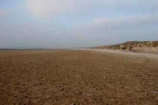 Sussex_15